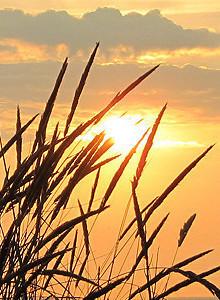 cropped-cropped-cropped-cropped-cropped-Borkum_Webseite371111.jpg