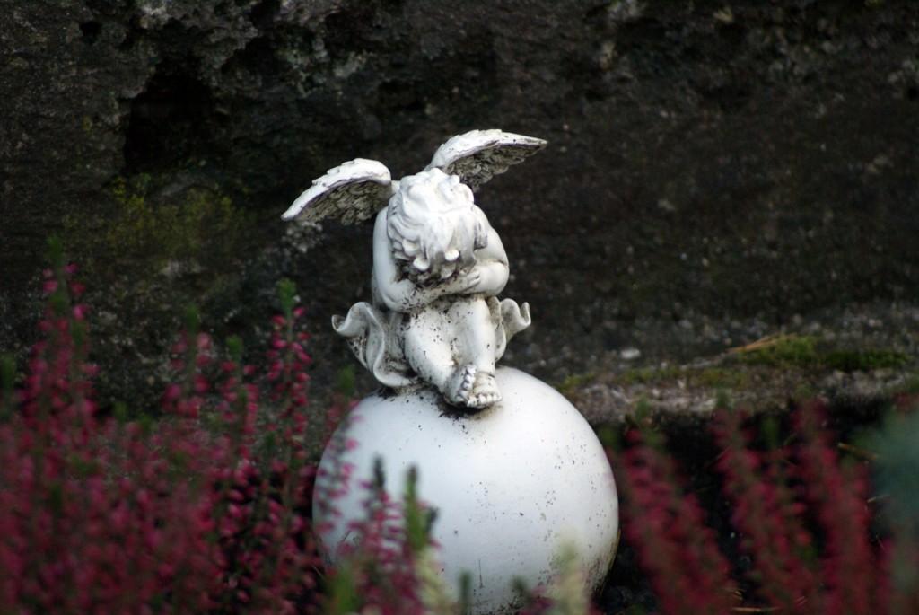 Kommunalfriedhof, Salzburg, Österreich
